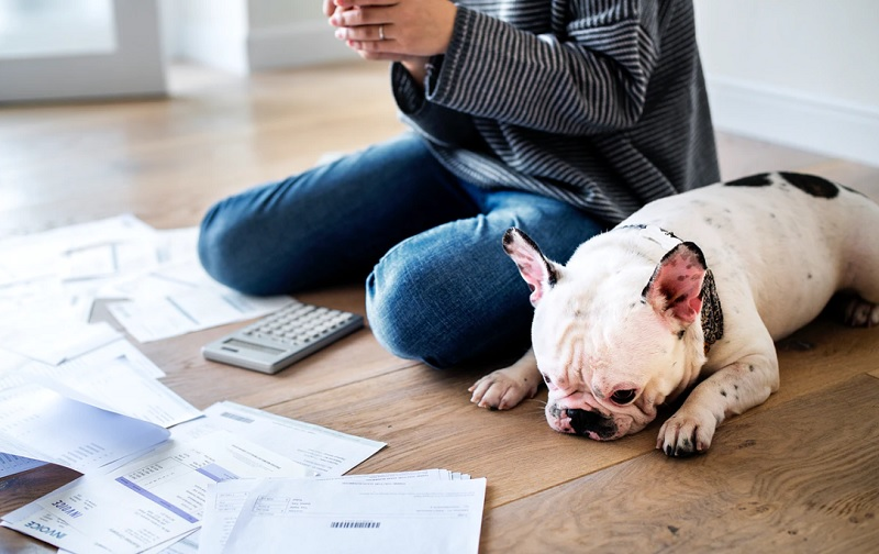 WealthNavi(ウェルスナビ)の確定申告における申告分離課税